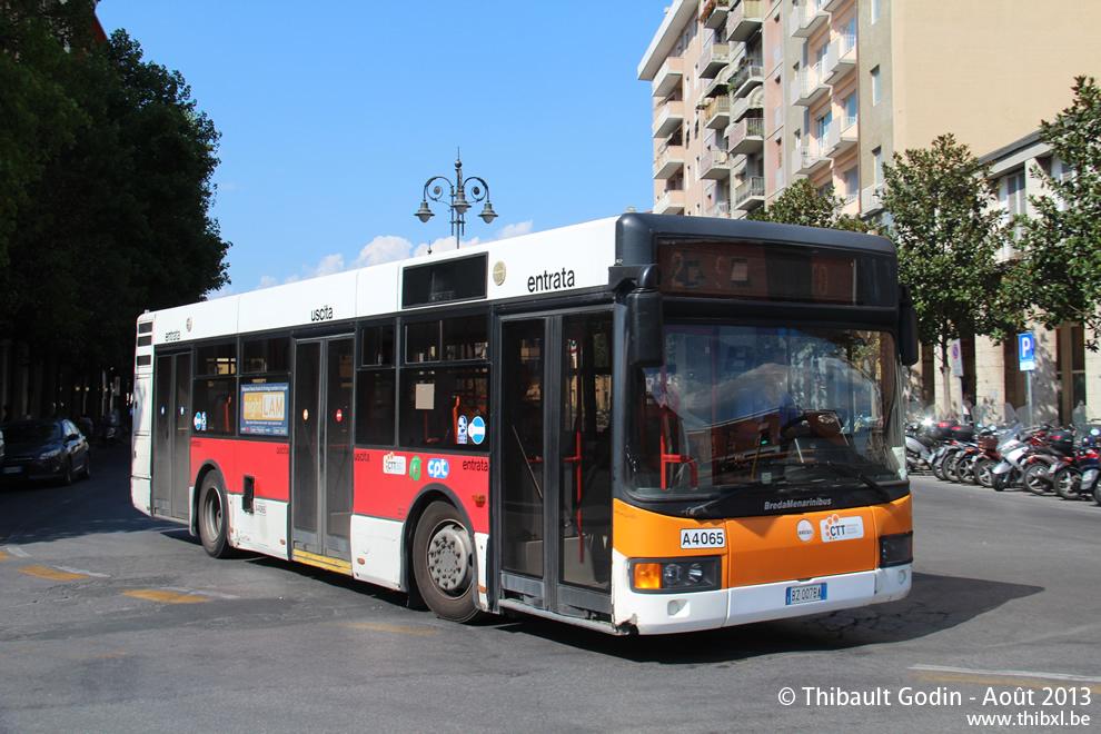 Pise Bus 2